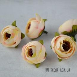 Головка ранункулюса Есения кремово-розовая 4 см