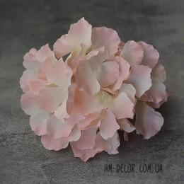Гортензия Белла кремово-розовая 17 см
