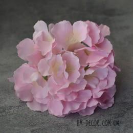 Гортензия Белла нежно-розовая 17 см
