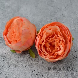 Головка пиона Мартин абрикосовая с серединкой 8 см 1 шт.