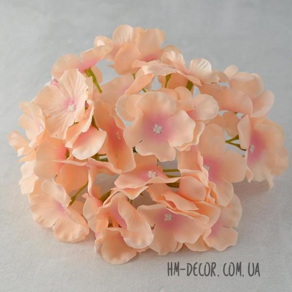 Гортензия пышная розово-персиковая 18 см