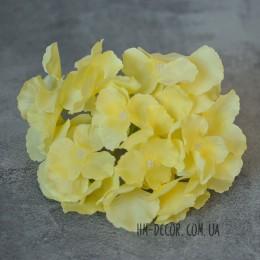 Гортензия Белла желтая 17 см