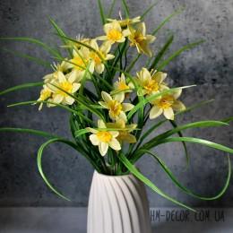 Нарцисс желтый куст 21 гол. 35 см