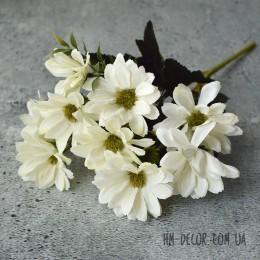 Хризантема осенняя молочная 30 см