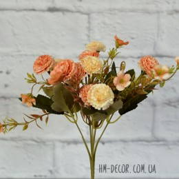 Хризантема мелкая персиковая 30 см
