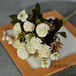 Хризантема мелкая молочная 30 см