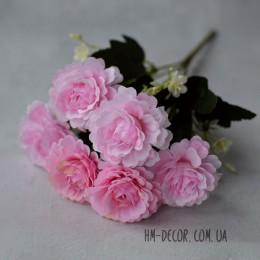 Букет камелий нежно-розовый 6 гол 30 см