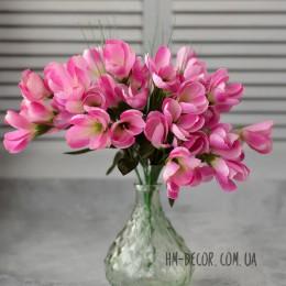 Крокусы кремово-розовые пышные букет 7 веток 25 см
