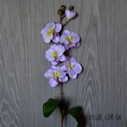 Орхидея фаленопсис лиловая 75 см