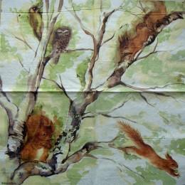 Салфетка для декупажа Белочка на дереве 33х33 см