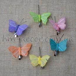 Бабочка микс на прищепке 5 см