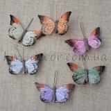 Бабочки, птички
