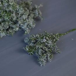 Полынь зеленая заснеженная с глиттером 20 см