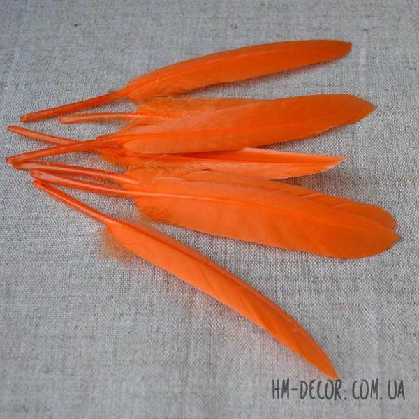 Перо натуральное оранжевое 12-15 см