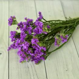 Кермек сухоцвет фиолетовый букет