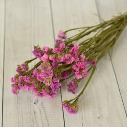 Кермек сухоцвет розово-сиреневый букет