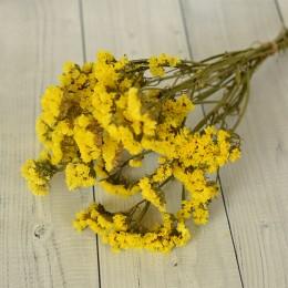 Кермек сухоцвет желтый букет