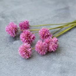 Сухоцвет гомфрена Fier розовая на ножке 7 шт 25 см