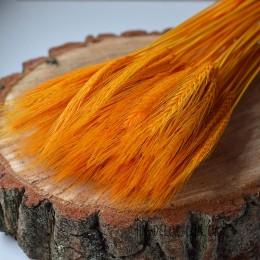 Пшеница натуральная оранжевая 10 шт.