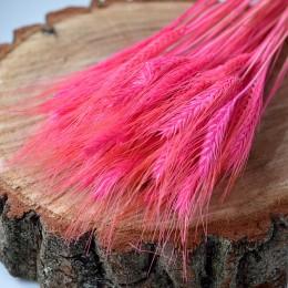 Пшеница натуральная светло-розовая 10 шт.