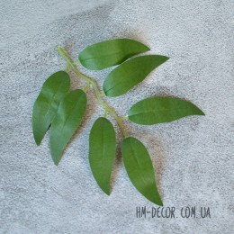 Лист ивы зеленый 14 см