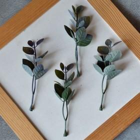 Веточка рускуса с круглыми листиками зелено-фиолетовая 10см 1 шт.