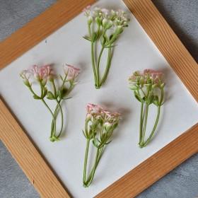 Веточка гипсофилы тройная розово-зеленая 8 см 1 шт.