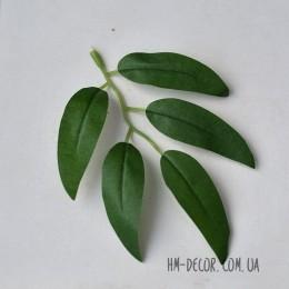 Лист ивы зеленый 12 см