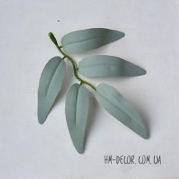 Лист ивы пепельно-зеленый 12 см