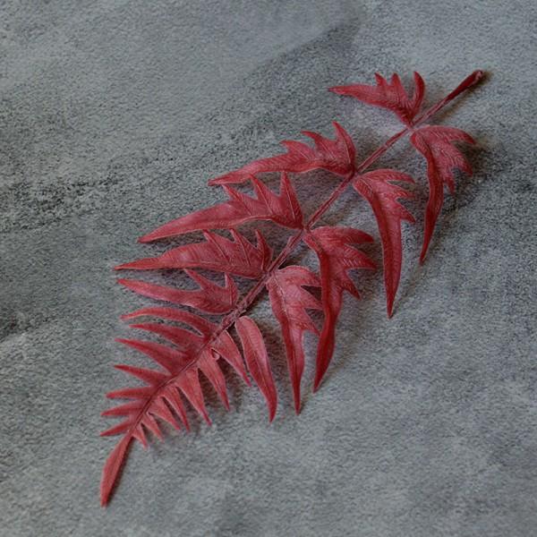 Лист папоротника фигурный вишневый премиум 24 см