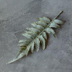 Лист папоротника седой премиум 22 см