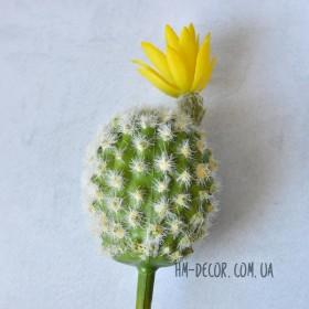 Кактус с желтым цветком 12 см
