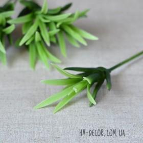 Суккулент на ножке 001 зеленый 5 см