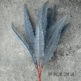 Папоротник нефролепис серо-голубой 13 листьев 45 см