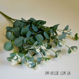 Эвкалипт куст зелено-голубой глянцевый 70 см