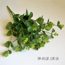 Эвкалипт куст зеленый глянцевый 70 см