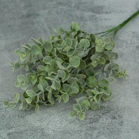 Эвкалипт зеленый с напылением 6 веток 30 см