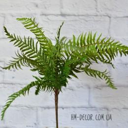 Папоротник премиум зеленый с корнем 15 листьев 45 см