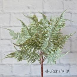 Папоротник седой премиум 19 листьев 45 см
