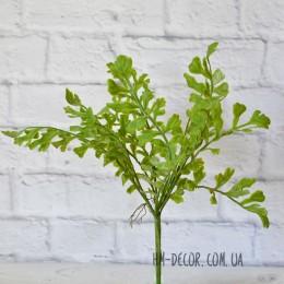 Руккола премиум 13 листьев 45 см