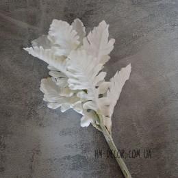 Цинерария белая ветка 30 см