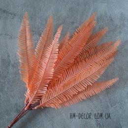 Папоротник нефролепис оранжевый 13 листьев 45 см
