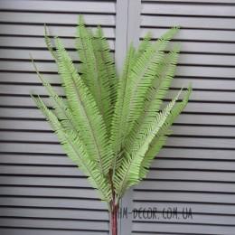 Папоротник нефролепис светло-зеленый 13 листьев 45 см