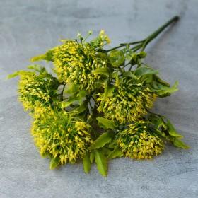 Чертополох с желто-зелеными листьями и соцветиями 30 см