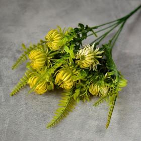 Чертополох новый желто-зеленый 30 см