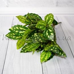 Куст глянцевый с листьями диффенбахии 25 см