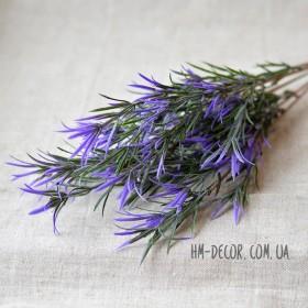 Розмарин куст фиолетовый высокий 45 см