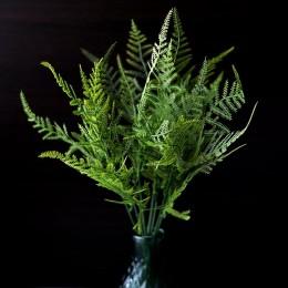 Папоротник мелкий зеленый 30 см