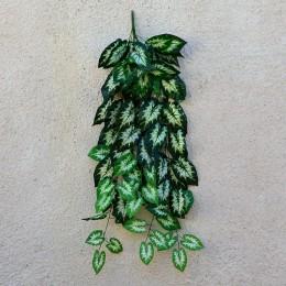 Лиана с листьями сингониума 5 веток 1 м