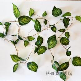 Лиана с листьями диффенбахии 2,4 м